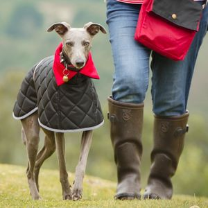 Hound Quilted Washable Coat - clothes