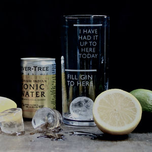 Etched 'Fill Gin To Here' Glass