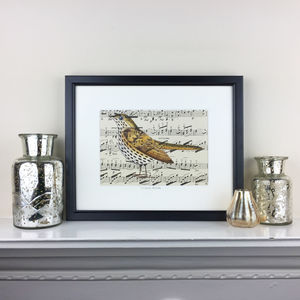 Mistle Thrush Painting On Antique Music - music