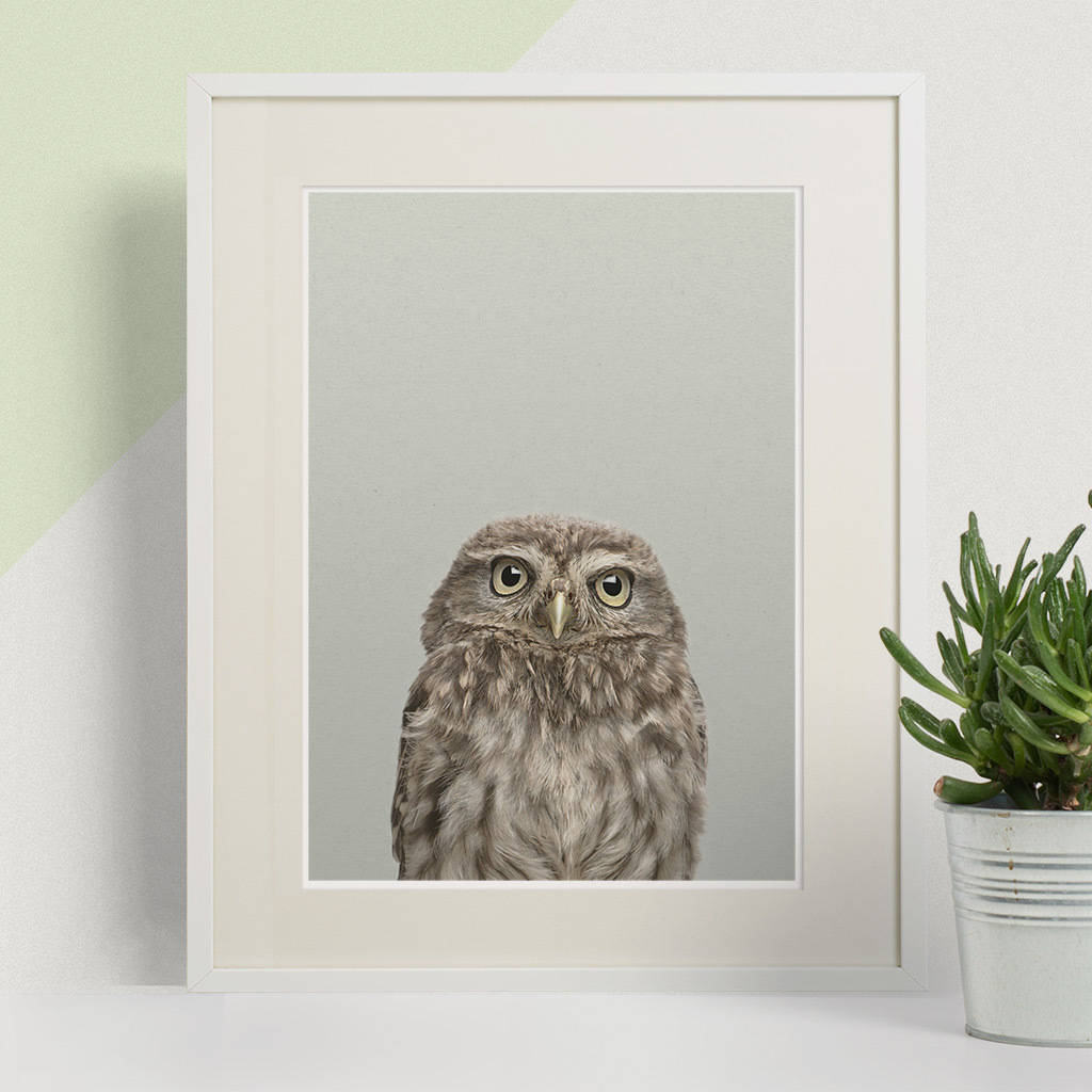 Woodland Owl Peekaboo Animal Print