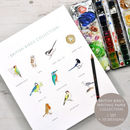 British Birds Writing Paper Gift Set