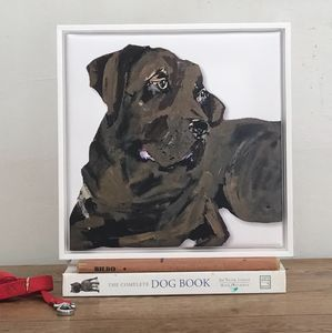 Brown Labrador, Framed Canvas Print