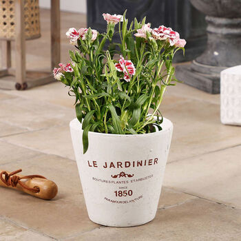 Le Jardinier French Country Style Planter