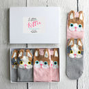 Little Kitten Box Of Socks