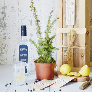 Gin Gardening Gift Crate - 40th birthday gifts