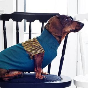 Dog Jumpers Squares - dogs