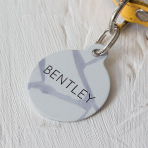 Fragmented Pet ID Tag - dogs