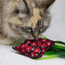 Handcrafted Organic Catnip Poppy Parcel Toy