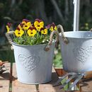 Set Of Two Metal Heart Planter Buckets