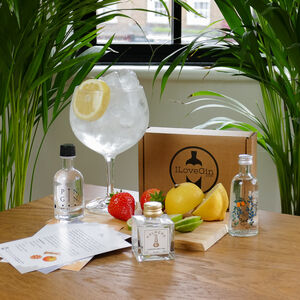 Three Dry Gins Tasting Gift Set