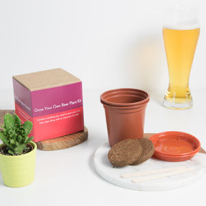 Grow Your Own Beer Plant Kit - more