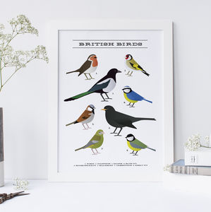 British Garden Birds Print - posters & prints