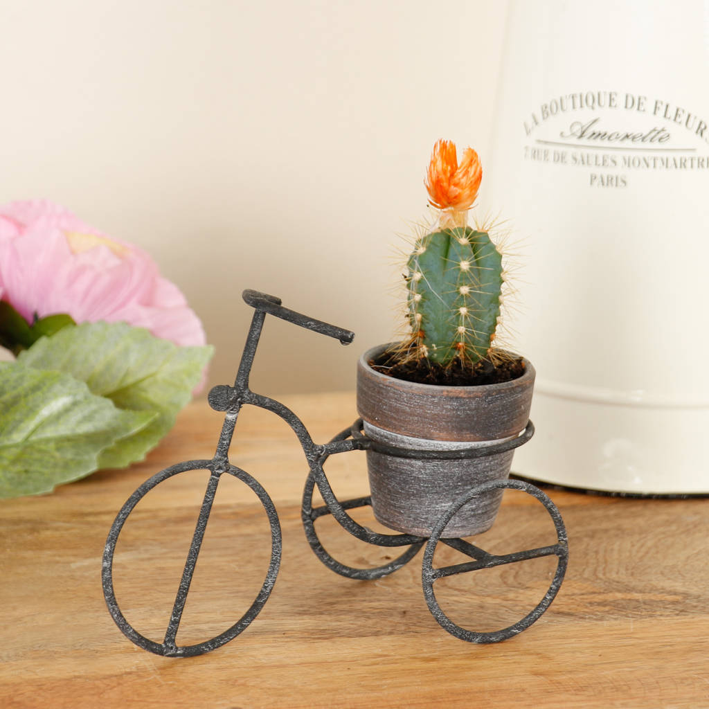 Tricycle Tabletop Planter