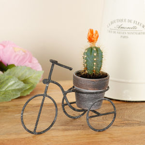 Tricycle Tabletop Planter - sport-lover
