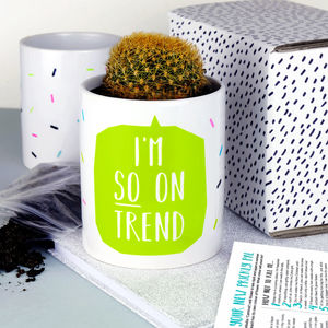 I'm So On Trend Cactus Flower Pot - gardening
