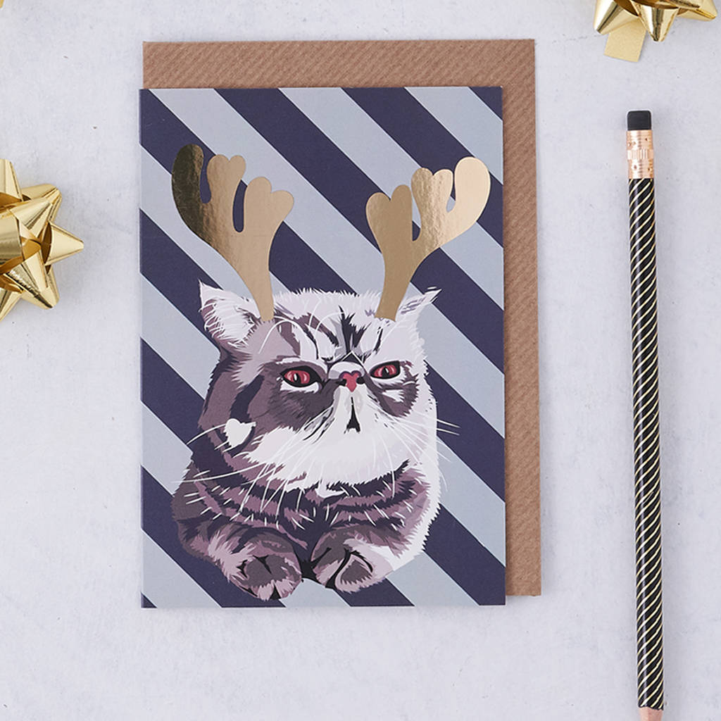 grumpy cat christmas card by lorna syson | notonthehighstreet.com
