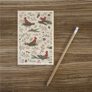 Cardinals Wooden Postcard By Timbergram