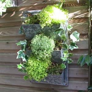 Filing Rack Herb Planter - storage