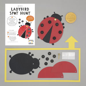 Make Your Own Ladybird Kit - wedding day activities