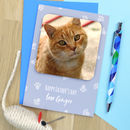 Father's Day From The Cat Coaster Card