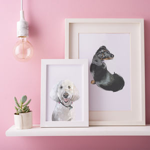 Personalised Illustrated Pet Portrait - pet portraits