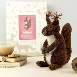 Red Squirrel Crochet Craft Kit