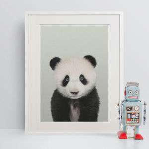 Panda Peekaboo Animal Print - children's pictures & prints