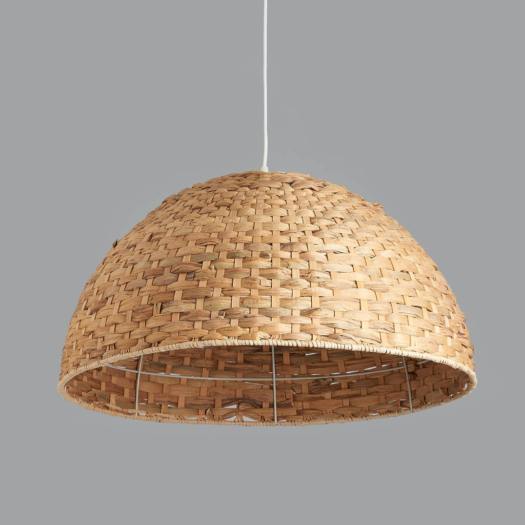design pendant light seed dome commerciallightingsupplier