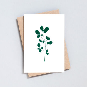 Luxury Cherry Print Card In Ivory/Green