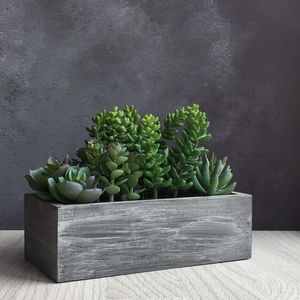 Artificial Succulent Trough