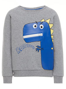 Dinosaur Long Sleeve Sweatshirt - winter sale