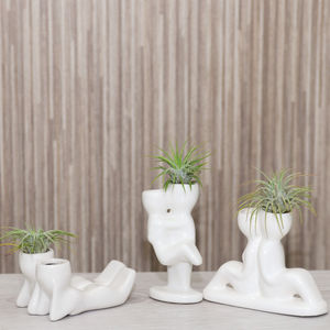 Mini Couple Figure Plant Holder With Air Plant - pots & planters