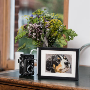 Stitch Your Own Dog Tapestry From Your Favourite Photo - shop by interest