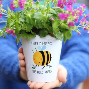 Mummy You Are The Bees Knees Plant Pot