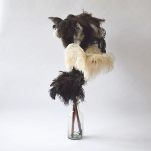Ostrich Feather Dusters - hardware