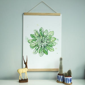 Succulent Botanical Illustrated Print - new in prints & art