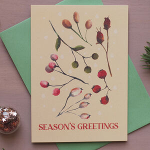 Season's Greetings Winter Berries Christmas Cards