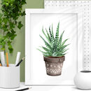 Watercolour Cactus Print Tryptic Set Green Brown