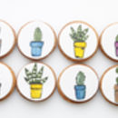 Cactus Plants Biscuits Gift Set