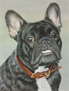 Original Hand Painted Pet Portrait - animals & wildlife