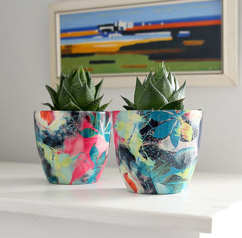 Teal And Fuschia Plant Pot