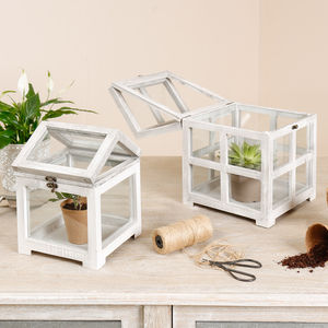 Set Of Two White Wooden Mini Greenhouses - pots & planters