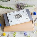 'Just Because' Illustrated Sleeved Botanical Box