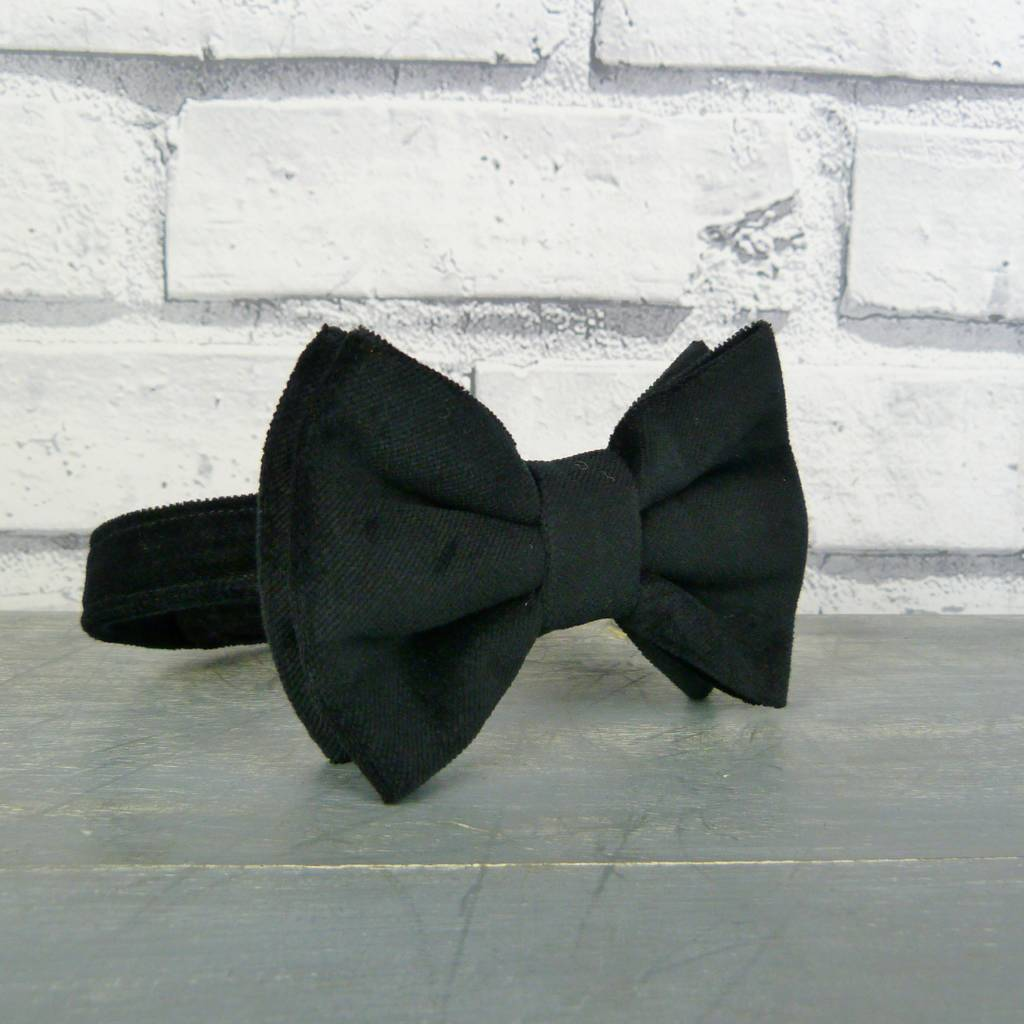 Boys Velvet Oversized Bow Tie