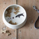 Illustrated Spaniel Dog Bowl