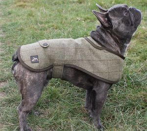 French Bulldog Dog Coat - clothes