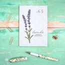 Lavender Watercolour Wildflower Pocket Journal
