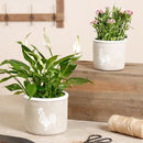 Farmhouse Hen Garden Plant Pot Set