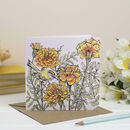 'Floral Summer' Mixed Pack Of Ten Greeting Cards