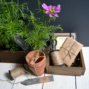 Tidy Gardener Planting Collection Gift Box - pots & planters